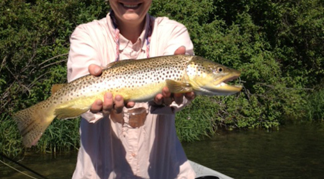 Liz cheney my mistake on wyoming fishing license for Wyoming fishing license