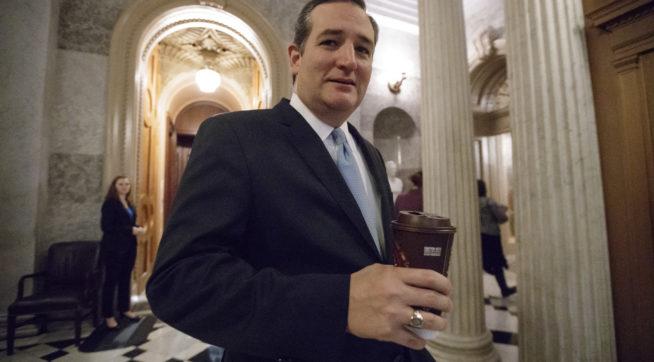 Schumer Calls Cruz Health Care Bill Amendment A 'Hoax'