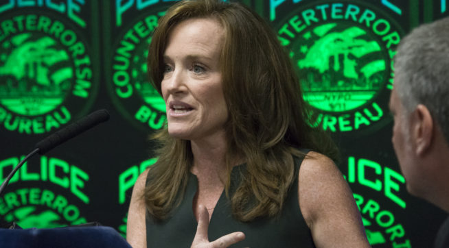Twitter Reacts To Kathleen Rice Calling NRA, Dana Loesch Domestic Security Threats