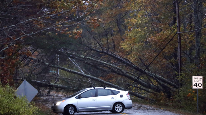 A motorist turns around after finding downed pine trees blocking Flying Point Road during a storm in Freeport, Maine, Monday, Oct. 30, 2017.  A strong wind storm has caused widespread power outages. (AP Photo/Robert F. Bukaty)