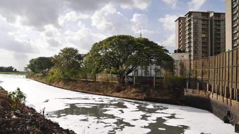 Toxic froth from industrial pollution floats on Bellundur Lake on World Environment Day, in Bangalore, India, Monday, June 5, 2017. The World Environment Day is celebrated on June 5 every year by the United Nations to stimulate global awareness on environmental issues. (AP Photo/Aijaz Rahi)