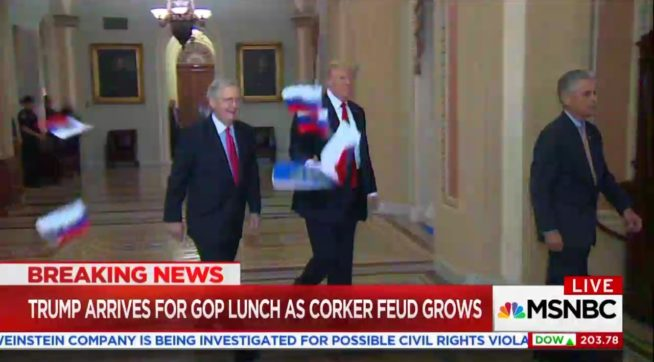 Protester throws Russian flags at Trump as he walks through the Capitol