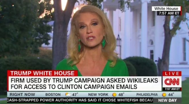 Kellyanne Conway Stops Interview to Speak to Squirrel